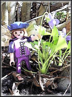 Veilchen  von Cicely Mary Barker   Ich bin keine von den feinsten, aber eine von den kleinsten Blumen, die der Frühling bringt.   Kuckuk rief mich aus der Ferne, den hör ich besonders gerne, weil er so ganz anders singt.