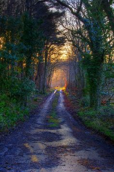 Maidens, Ayrshire, Scotland  Don't Stray From The Path! (by WullieS)