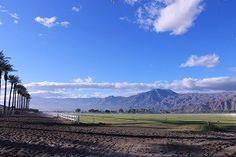 Equestrian Property Sales for the Coachella Valley - La Quinta Luxury Real Estate, Luxury Homes For Sale La Quinta CA