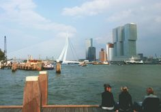 21 More Reasons to Love Rotterdam