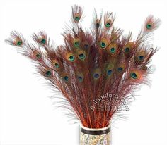 Today's Feature Product : Dyed Orange Peacock Feathers    Peacocks have long been admired for their gorgeous appearance. In Asia, peacocks are crowned symbols of youth and beauty. Their feathers are considered auspicious and protective. In India, peacocks are sacred; in the north, peacock feathers may be burnt to ward off diseases.    http://www.asianideas.com/dyorpefe.html