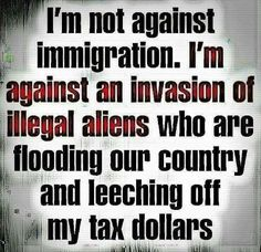 Why does the left think every country but ours is allowed to have immigration laws? Illegal Aliens, Conservative Politics, Political Views, God Bless America, Deep Thoughts, We The People, Things To Think About, It Hurts, Wisdom