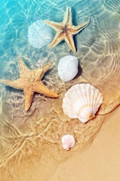 Wallpaper Praia, Ocean Wallpaper, Summer Wallpaper, Nature Wallpaper, Wallpaper Backgrounds, Beach Aesthetic, Tropical Beaches, Pretty Wallpapers, Aesthetic Backgrounds