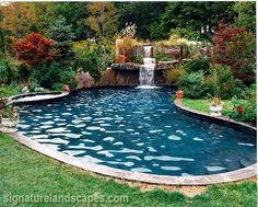 Image detail for -Naturalistic Designer swimming pools and waterfalls