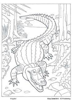Animal Coloring Pages | ✖️More Pins Like This One At FOSTERGINGER @ Pinterest✖️
