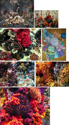 Exploring how artists are responding to urgent global issues with creative activism. Hyperbolic Crochet Coral Reef