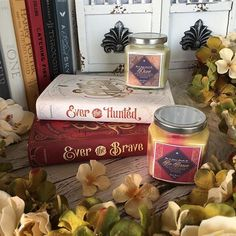 What are you doing today bookies? I slept in so Im feeling pretty great. I thought Id take another chance to show you some of my favorite books because its been a day or two since my last appreciation post of my Ever books   Candles by @noxtolumoscandleco Use my code TINE20 for 20% off.  Day 13: #rosyhyggetales {Candles}  Day 13: #bookishfaves17 {author} I loved Ever the Hunted from afar all last year and finally had the luck to become bookstagram penpals with  @erinsummerill within the last…