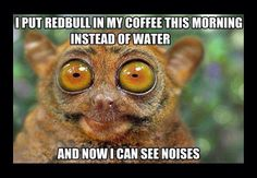 Instead of Water I Put Red Bull In My Coffee. Now I can See Noises!