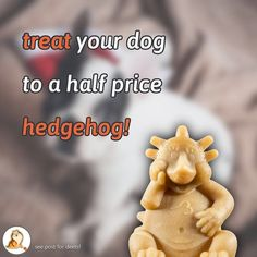 Our favourite little dog treat is currently going walkies out the door for half price! Get off Whimzees Dental Hedgehog Large plus great discounts on all Bundles that include it! Sale ends December 17 or while stocks last - be quick! Instagram Feed, Instagram Posts, December 17, Half Price, Little Dogs, Treat Yourself, Dog Treats, Hedgehog, Your Dog