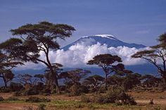 Tanzania want to go back to see this Paises Da Africa, Out Of Africa, Kenya Africa, Great Places, Places To Go, Beautiful Places, Simply Beautiful, Tanzania Safari, Mount Kilimanjaro