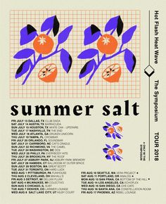 Summer Salt - Summer 2018 tour poster