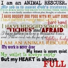 Animal Rescue.... my wallet will be empty but my heart will be full.