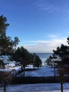 Baltic sea with snow and sun.