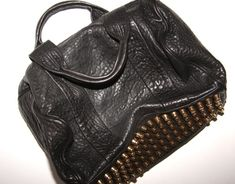 Alexander Wang Rocco bag. I don't know why I love it but I DO.