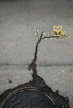 this is the kind of street art I could do...