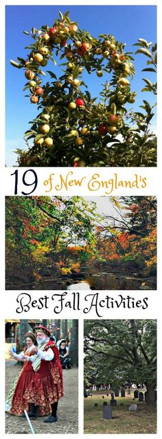 19 of New England's Best Fall Activities! This is the best time of year to explore New England. Usa Travel Guide, Travel Usa, Travel Tips, Travel Destinations, Travel Advice, Travel Ideas, Travel Articles, Beach Travel, Travel Europe