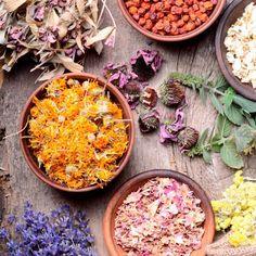 Herbal Medicine Benefits