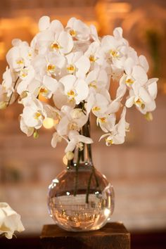 Simple, sophisticated, lovely ~ Orchids. Via http://StyleMePretty.com/2012/04/16/los-angeles-wedding-by-samuel-lippke-studios-beth-helmstetter-events/ Photography by samuellippke.com,  Floral Design by hollyflora.com