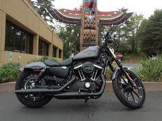 2016 Harley Davidson Iron 883 Bellevue