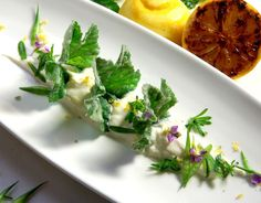 ried mallow with some white anchovy, grilled lemon, roasted garlic ricotta cream and few rattail radishes and cleaver