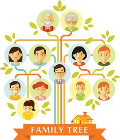 Buy Family Tree by Evellean on GraphicRiver. Family tree generation people icons infographic with faces in flat style Full vector editable ZIP contain: