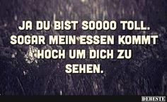 Du bist so toll Really Funny, Funny Cute, Funny Jokes, Hilarious, Vie Positive, True Words, Laugh Out Loud, Decir No, Best Quotes