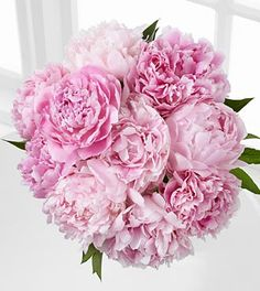 Picture Perfect Peony Bouquet - 10 Stems
