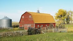 Red barn pictures portray the splendor of the icon symbol of traditional farm life. Think of a farm and in your mind a picture will pop up of Old MacDonald with his farm animals in a big red barn.