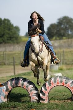 Extreme Trail Horse Obstacles | Hoping to be America's favorite horse