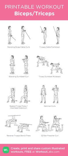 Biceps/Triceps
