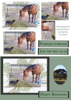 - A birthday card for male, or country person in an easy to make pyrimid style Images 3d, Odd Couples, Decoupage Paper, Friends Forever, 2 In, Pet Dogs, Birthday Cards, Two By Two, Card Making