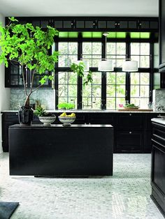 The greenery in this #black kitchen lifts this space to a new level, picking up tones in the marble and mosaic floor. From The #Monochrome #Kitchen, the RSD Blog.