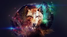 Brown and black wolf digital wallpaper, artwork, planet, space