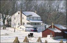 Amish Farm -Winter