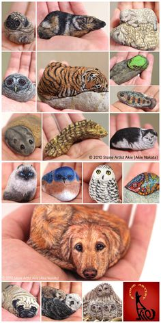 Akie Nakata creates rocks that fit in the palm of your hand. They are beautiful animals and birds and we are featuring our favorites. Stone Art Painting, Pebble Painting, Pebble Art, Painted Rock Animals, Hand Painted Rocks, Painted Pebbles, Painted Stones, Rock Painting Ideas Easy, Rock Painting Designs