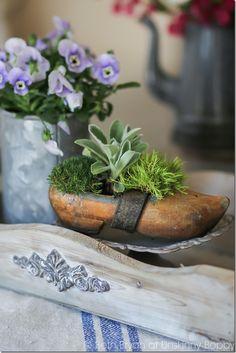Decorating with Dutch Wooden Shoes - Atta Girl Says Dutch Wooden Shoes, Wooden Clogs, Spring Flowering Bulbs, Pot Jardin, Dirt Cheap, Wooden Decks, Bulb Flowers, Spring Home, House Tours