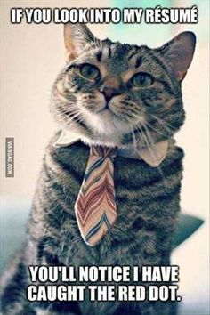 If you look into my resume you'll notice I have caught the red dot.