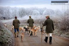 the other half of fox hunting  exercising the hounds on a frosty day remember?