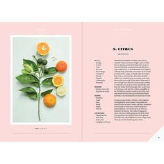 "Citrus Spread from ""Forager: A Subjective Guide to Miami's Edible Plants"""