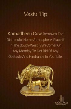 Kamadhenu Cow has heavenly powers, nd is effective in attracting profits from land and agricultural technology. Mandir Design, Pooja Room Door Design, Puja Room, Vastu Shastra, Feng Shui Tips, Indian Home Decor, Home Interior Design, Living Room Designs, Decoration