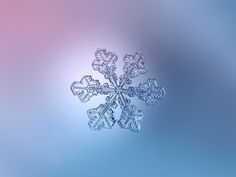 Snowflakes Come In 35 Different Shapes, Scientists Say