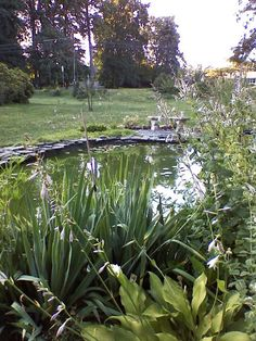 Our Favorite Garden Ponds From Rate My Space : Outdoors : Home & Garden Television