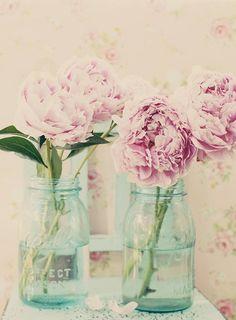 Pfingstrosen in blauen Vasen