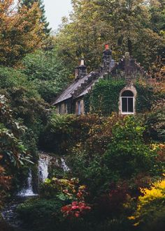 Idyllic English Country Villages Country cottage in the Forest Cottage In The Woods, Cozy Cottage, Cottage Homes, House In The Forest, Forest Home, Witch Cottage, Cottage Art, Cottage Design, Fairytale Cottage