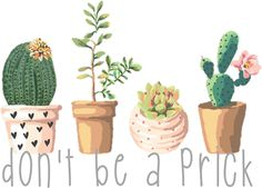 Dont Be a Prick Succulents Sticker