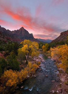 "The Watchman ""Dawn Watch"" in Zion National Park ~ Utah"