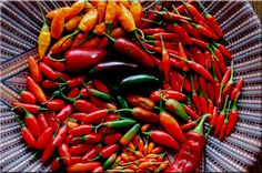 Chili Pepper Photography