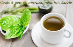 Ceaiuri pentru nevroză, frică, neliniște, isterie – LaTAIFAS Barware, Mai, Tableware, Health, Dinnerware, Health Care, Bar Accessories, Dishes, Salud