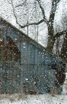 Raining winter