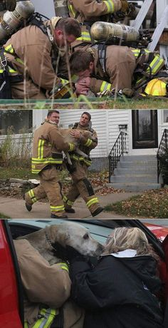 Amazing firefighters save dog with CPR